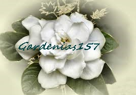 Gardenias In Heaven…