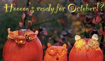 Fallen leaves, pumpkins, scarecrows, warm apple cider & boots…Happy Autumn!